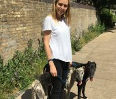 Dog Walker Chiswick